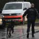 A Belgian police dog on patrol with its handler (BELGA PHOTO YORICK JANSENS)